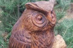 Owl 2 Horned