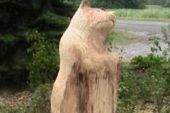 plank rd sarnia 089